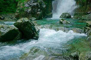 仙樽の滝と東股谷川 付知峡の写真素材 [FYI04079178]