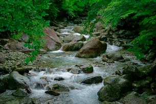 乙女渓谷・加子母川の写真素材 [FYI04079182]