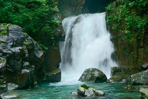 仙樽の滝 付知峡 の写真素材 [FYI04079184]