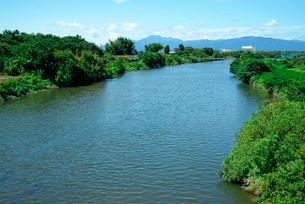 境川・旧木曽川,西方の伊吹山を望むの写真素材 [FYI04079199]