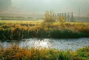 早朝の西野川,の写真素材 [FYI04079228]