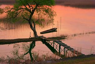 夜明け,揖斐川と川舟の写真素材 [FYI04079244]