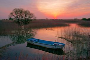 夜明け,揖斐川と川舟の写真素材 [FYI04079251]