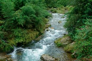 津保川 長良川支流 川上橋の上流の写真素材 [FYI04079277]