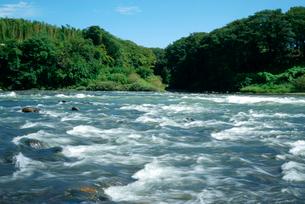 木曽川と可児川の合流点 可児合の瀬の写真素材 [FYI04079287]