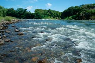木曽川と可児川の合流点 可児合の瀬の写真素材 [FYI04079294]