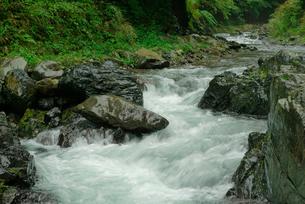 長谷川 粕川の支流の写真素材 [FYI04079297]