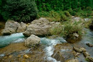 津保川 長良川支流 川上橋の上流の写真素材 [FYI04079301]