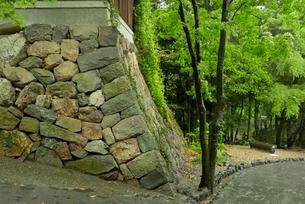 山城 黒門の右側石垣の写真素材 [FYI04079335]