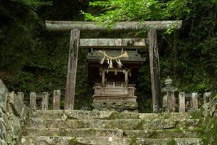 上有知湊 長良川の住吉神社の写真素材 [FYI04079504]