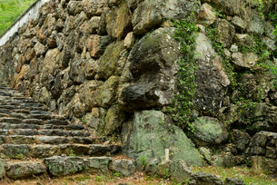 小倉山城 本丸の石垣 右側の写真素材 [FYI04079508]