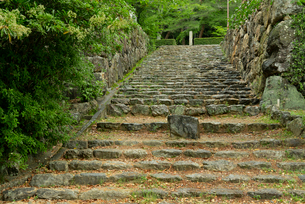 小倉山城 本丸門へ続く石段の写真素材 [FYI04079510]