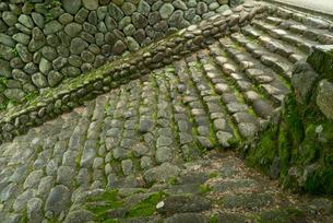 上有知湊 長良川 の石段 石畳の写真素材 [FYI04079523]