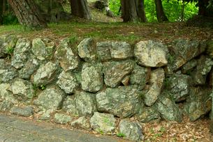 小倉山城 二之丸 西南櫓の石垣 西面の写真素材 [FYI04079527]