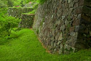 田丸城 北之丸の南東角の石垣と本丸虎口の石垣 遠方の写真素材 [FYI04079565]