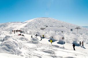 ザンゲ坂コースのスキーヤーの写真素材 [FYI04079648]