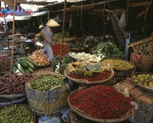 ドンバン市場の野菜売りの写真素材 [FYI04079694]