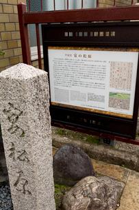 平安宮 宴の松原跡の写真素材 [FYI04079840]