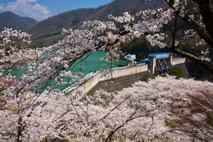 大野ダムの写真素材 [FYI04079848]