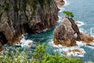 浦富海岸 千貫松島の写真素材 [FYI04079889]