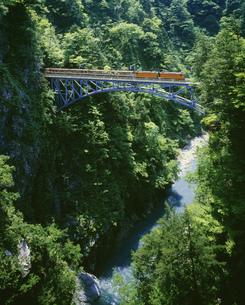新緑の後曵橋を渡る黒部渓谷鉄道の写真素材 [FYI04080232]