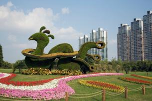 世紀公園の植物で作った鳥のオブジェの写真素材 [FYI04080487]