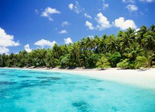 マジュロ環礁の写真素材 [FYI04080623]