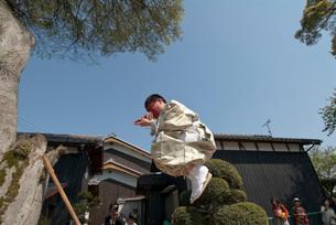 三重生神社の牛祭りの王の鼻の写真素材 [FYI04080715]