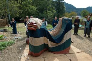 河辺八幡神社の秋祭りの獅子舞の写真素材 [FYI04080723]