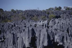 ツィンギ・デ・ベマラ厳正自然保護区の写真素材 [FYI04080766]