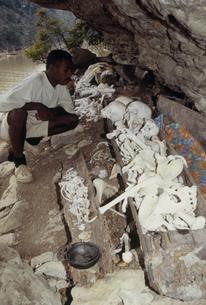バシンバ族の墓の写真素材 [FYI04080784]