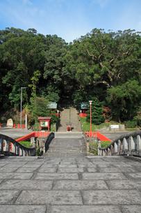 降来橋と可愛山陵の写真素材 [FYI04081126]