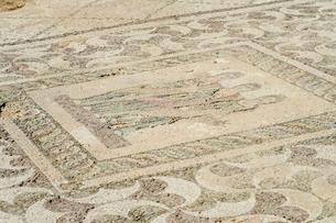 カトパフォス遺跡のアゴラ内のモザイク画の写真素材 [FYI04081219]