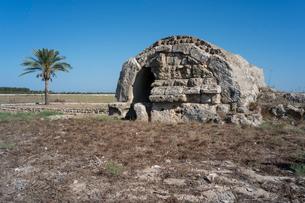 サラミス遺跡西の墳墓群の写真素材 [FYI04081222]