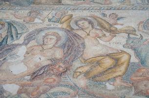 カトパフォス遺跡のモザイク(テティス女神)の写真素材 [FYI04081228]