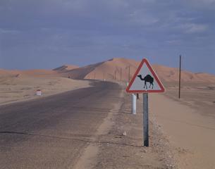 トランスサハラ道路西部大砂丘 アルジェリアの写真素材 [FYI04081770]