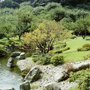 辻村植物公園の写真素材 [FYI04081855]