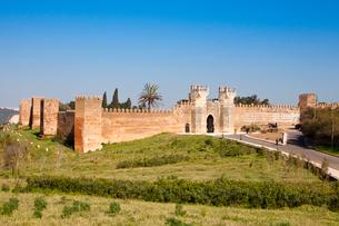 Chellah Fortressの写真素材 [FYI04081881]