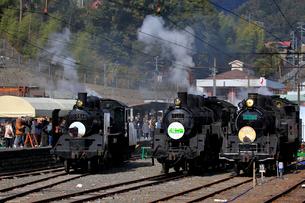 大井川鐡道の蒸気機関車の写真素材 [FYI04082156]