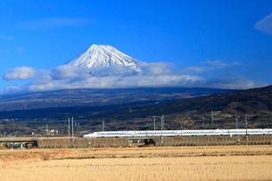 新幹線と富士山の写真素材 [FYI04082181]