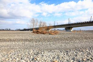 瀬切れして川の表流水が消失した安倍川の写真素材 [FYI04082219]