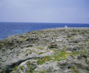中里海岸の写真素材 [FYI04082692]