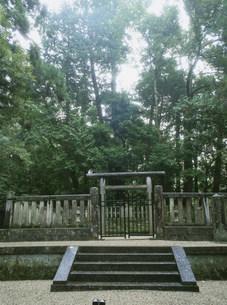 後醍醐天皇陵の塔尾陵の写真素材 [FYI04082918]