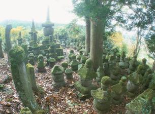 財前家墓地と国東塔の写真素材 [FYI04082965]