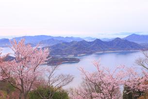 筆影山公園の桜の写真素材 [FYI04082978]