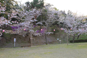 みやま公園の写真素材 [FYI04082984]