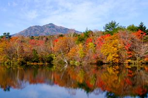 八方湖の紅葉の写真素材 [FYI04082985]
