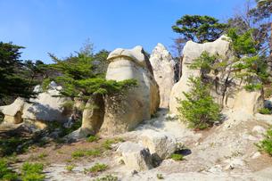 きのこ岩の写真素材 [FYI04083003]