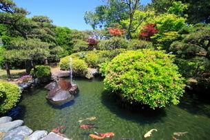 新潟市水道局青山浄水場の水道遊園の写真素材 [FYI04083018]