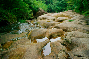 乳岩峡・さじき岩 名勝天然記念物 の写真素材 [FYI04083324]